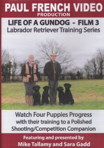 Mike Tallamy & Sarah Gadd's 'Life of a Gundog - Film 3: Labrador Retriever Training Series' DVD
